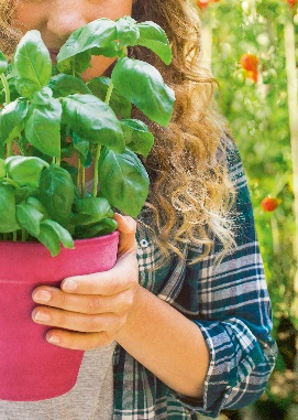 7ème collecte nationale des pesticides utilisés au jardin